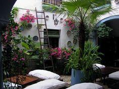 Patio andaluz| decoracion