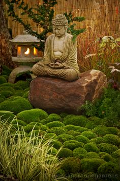 Asian inspired garden - always wanted a japanese lantern in a garden...maybe one day.