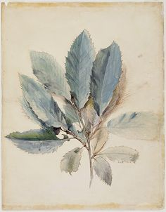 John Ruskin was the leading English art critic of the Victorian era, as well as an art patron, draughtsman, watercolourist, a prominent social thinker and philanthropist. Wikipedia Born: February 8, 1819, Brunswick Square Died: January 20, 1900, Coniston, United Kingdom