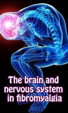The brain and nervous system in #fibromyalgia  The Snoozle slide sheet is great for fibro: www.thesnoozle.com