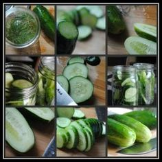 Garlic Dill Pickles — Whoa, these are so easy and amazing. Never buy straight-up dill pickles again! Variations: more or less garlic, add hot peppers for spice. Garlic Dill Pickles, Sour Pickles, Pickles Recipe, Refrigerator Pickles, Homemade Pickles, Pickling Cucumbers, Veggie Tales, How To Make Homemade, Canning Recipes