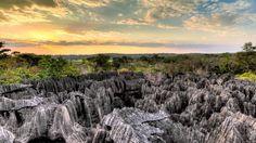 Tsingy+De+Bemaraha+National+Park+Territory+Of+Lemur