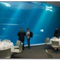 Aquariums in southern california
