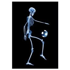 Skeleton playing football by Science-Photo-Library - CafePress Blueprint Art, Football Design, Science Photos, Anatomy Reference, Painted Pumpkins, Photo Library, Poster Prints, Posters, Clip Art