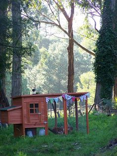 chicken coop. and a cute one at that