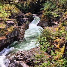 Little Qualicum Falls Oceans, Waterfalls, Rivers, Lakes, Creatures, Explore, Park, Pictures, Outdoor