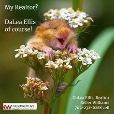 My Realtor? DaLea Ellis of course!   DaLea Ellis, Realtor Keller Williams 702-232-6268 cell  #RealEstate #Realtor #Realty #Home #Housing #Listing #lasvegas #KellerWilliams #kw
