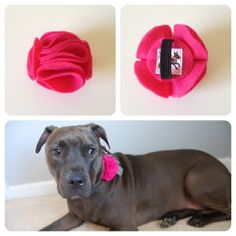 Hot Pink Ruffle Flowery Felt Accessory for Pet Collars on Etsy, $14.00
