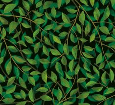 A Million Leaves - Dark | A wide width wallcovering that creates a layered canopy of beautifully detailed naturalistic leaves, set against a dark green background. view details on www.treniq.com