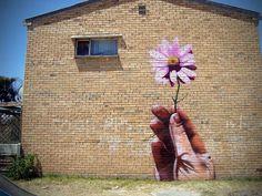Flower by: Falko
