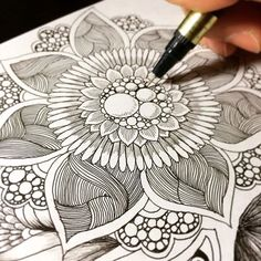 Zentangle doodle / botanical design step by step ボタニカル ゼンタングル by Noah's ART Doodles Zentangles, Tangle Doodle, Zentangle Drawings, Zen Doodle, Doodle Drawings, Doodle Art, Flower Drawings, Drawing Flowers, How To Zentangle