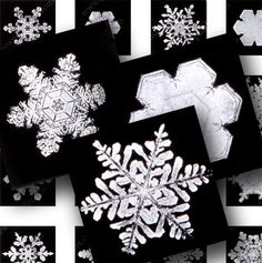 From photographs of real snowflakes that a farmer took in the early 1900s. >> awesome images from piddix!