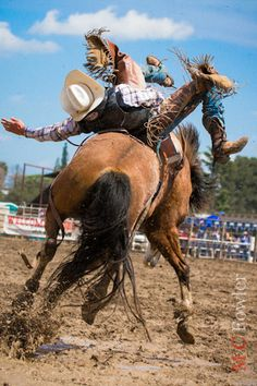 """Oakdale Rodeo.......idk who took these """"oakdale"""" photos but they're pretty dang good!"""