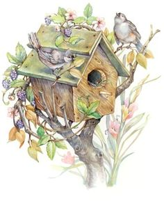 Birdhouse And Blackberries By Leesa Whitten