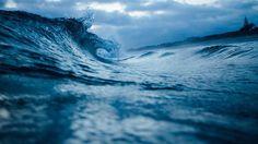 Tauranga wave tapet