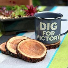 Rustic idea... small for coasters or large for for under dinner plates... for the rustic look. I've seen this in a table setting and LOVED it:)