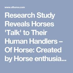 Research Study Reveals Horses 'Talk' to Their Human Handlers – Of Horse: Created by Horse enthusiasts for Horse enthusiasts