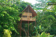 Rainforest Tree House w Hot Springs, Costa Rica