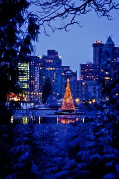 Vancouver, British Columbia, Christmas tree of lights in Stanley Park, Canada Canadian Christmas, Blue Christmas, Christmas Tree, Christmas Lights, Xmas, The Places Youll Go, Places To Visit, Vancouver Skyline, Vancouver British Columbia