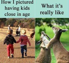 Morning Funny Picture Dump 35 Pics