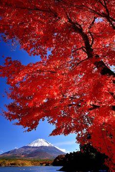 湖畔の秋の写真(画像) 写真ID:2217577- 写真共有サイト:PHOTOHITO