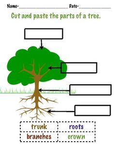 1000 images about tree on pinterest forest animals preschool and trees. Black Bedroom Furniture Sets. Home Design Ideas