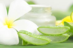 Aaah l'ALOE VERA ! Une plante magnifique aux propriétés médicinales et cosmétiques aussi variées qu'exceptionnelles.C'est simple, l'aloe vera s'utilise quasiment pour…