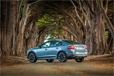 Discover the Cross Country from Volvo, one of the safest luxury sedans from Volvo. Volvo S60, Volvo Cars, Year 2016, Car Photography, Cross Country, Nissan, Sedans, Vehicles, Model