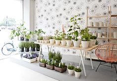 normann_copenhagen_vegetable_store_2