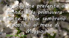 Benvenuto-Maggio-universe-stars