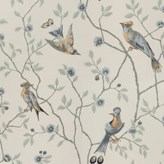 A classic pattern of interwoven branches and exotic birds in wonderful harmony, this version on a turquoise background will give the room its own dynamic. Wallpaper Series, Bird Wallpaper, Wallpaper Online, White Wallpaper, Fabric Wallpaper, Pattern Wallpaper, Antique Wallpaper, Bathroom Wallpaper, Turquoise Wallpaper
