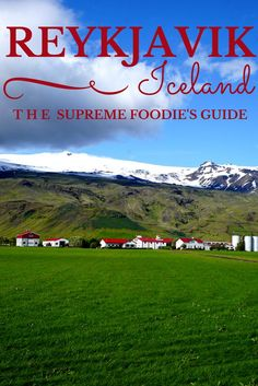 The Supreme Foodie's Guide to Reykjavik, Iceland