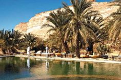 The Siwa Oasis is located in Egypt, about 50 kilometers east of the Libyan border, and 560 kilometers from Cairo, between the Qattara Depression and the Egyptian Sand Sea in the Libyan Desert.