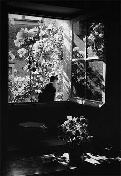 Édouard Boubat, Sans titre, 1972 via little miss lime / #light #cat #window