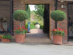 A pair of large Terracotta Garden Egg Pots frame the entrance to the Lady Baillie Garden at Leeds Castle, Kent Large Terracotta Pots, Leeds Castle, Garden Supplies, Garden Pots, Fresco, Entrance, Egg, Planters, Sidewalk