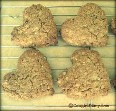homemade horse treats