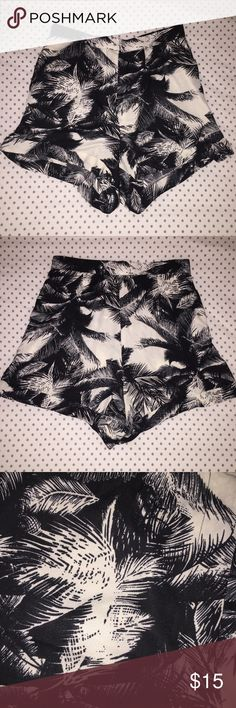 Black & White Palm tree shorts 💕REDUCED💕 Suuuuper cute black and white shorts with a palm tree print. They are a slightly high waisted and are very comfortable. Only been worn 1-2 times and they are in perfect condition. Size SMALL Shorts