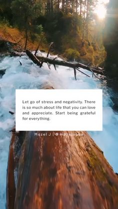 """M a z e l J 🌸 on Instagram: """"Start being grateful instead of resentful. 🌸 #mazelogue Please do not repost without credits. Original video from @johnderting Edits by…"""""""