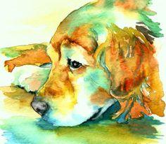 Golden Retriever watercolor