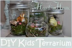 Want a fun little project to do with your kiddo? These little terrariums would…