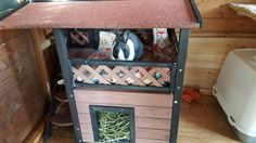 Inside those outdoor homes these rabbits have every need catered for #ahutchisnotenough Photo courtesy of Gemma Simon
