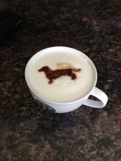 Starbucks and dachshunds...nothing better! ♥
