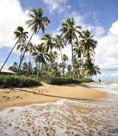 Photo about Paradise beach in Praia do Forte, Salvador de Bahia state, Brazil. Image of coastline, blue, idyllic - 5114554 Oahu Vacation, Weekend Vacations, Vacation Spots, Brazil Beaches, Waikiki Beach, Tropical Beaches, Hawaii Travel, Day Tours, Beach Resorts