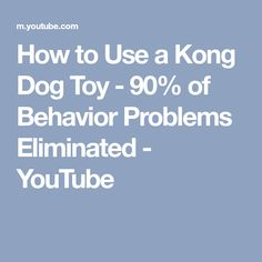 How to Use a Kong Dog Toy - 90% of Behavior Problems Eliminated - YouTube