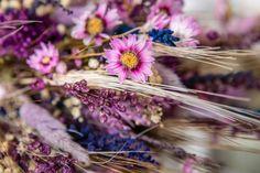 NOVELLE Ramo Preservado - DETALLE Dandelion, Plants, Bouquets, Boyfriends, Flowers, Dandelions, Flora, Plant, Planting