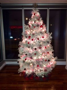 Noble Fir Flocked REAL Christmas Tree from David Hunter Garden ...