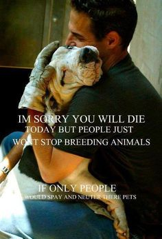 SPAY & NEUTER! ADOPT, don't shop! If you too can't bear to even THINK about how many beautiful beings are UNNECESSARILY EUTHANIZED.. please, PLEASE PASS ON THE MESSAGE. Help SAVE them..