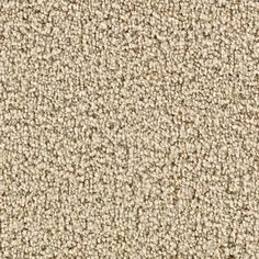 Tonal Carpet Images For Family Room