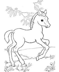 Heste er populære, de er kloge dyr der kan vække varme følelser hos mange voksne og børn. Børnene elsker at tegne heste, det kræver dog øv...