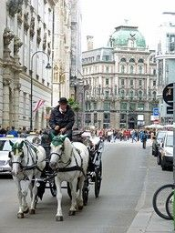 Vienna, Austria - such an old charming city ! loved the old buildings ! We did the horse and carriage ride .... So romantic. :)